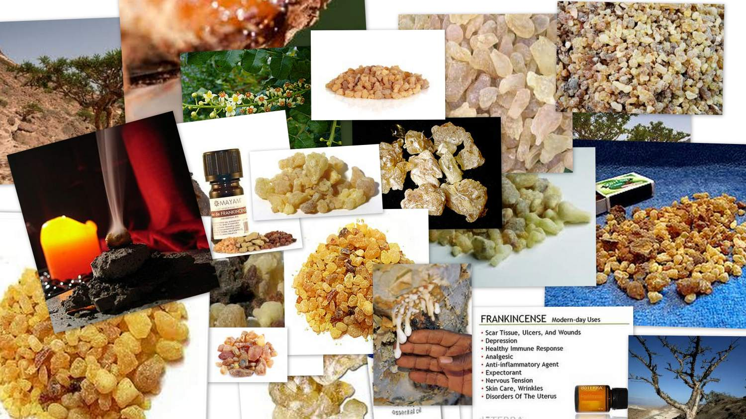 Frankincense in Aromatherapy
