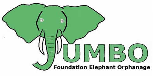 Jumbo Foundation Link to Paypal