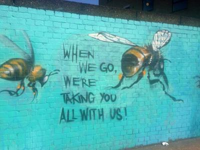 Bee Deaths from Pesticides
