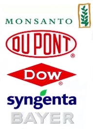 Food Chemical Manufacturers