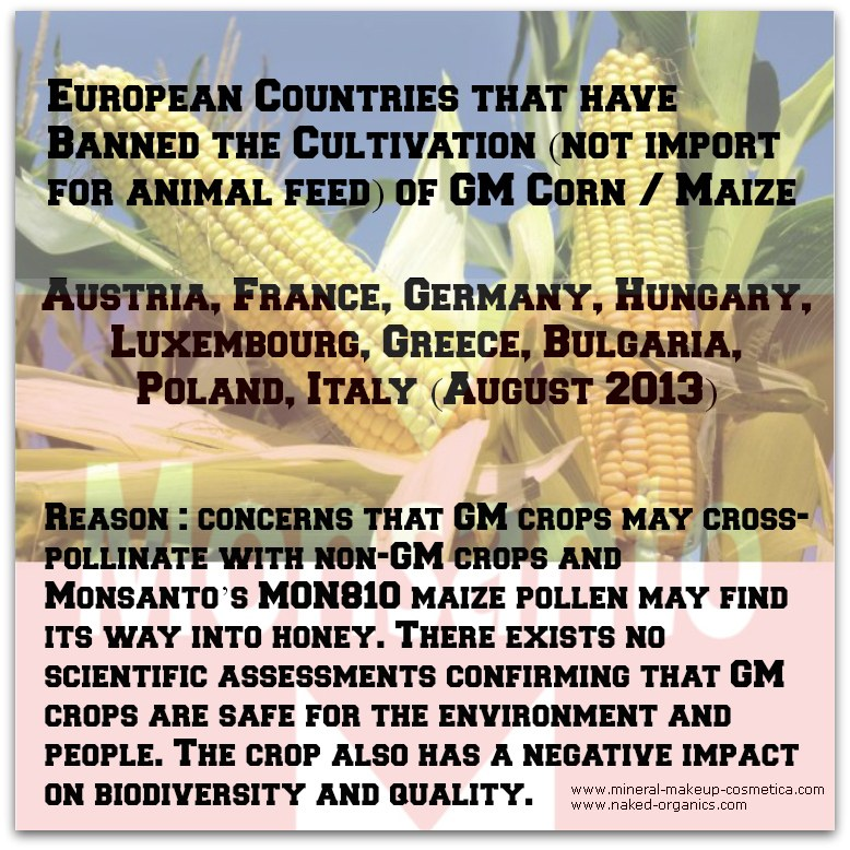 Infographics - Countries that have Banned GMO MON810 Cultivation in EU