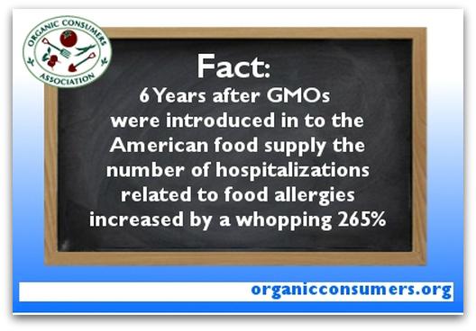 GMO Statistics in USA