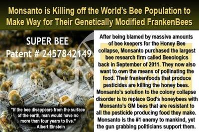 Monsanto Genetically Engineering Bees and Their Patent Number