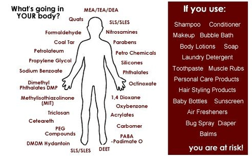 Type of Cosmetic Toxins in Your Body