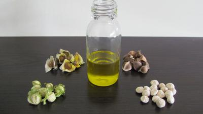 Moringa Seeds and Oil