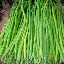 Moringa Natural Products Pods or Drumsticks