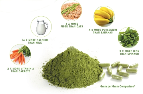 Moringa Powder Nutrition Values