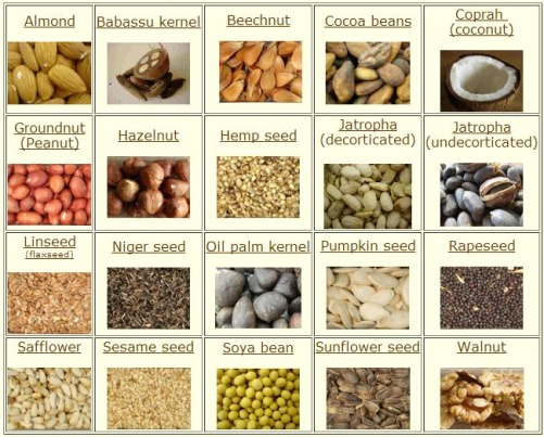 Various Seed Types that can be Pressed using PITEBA