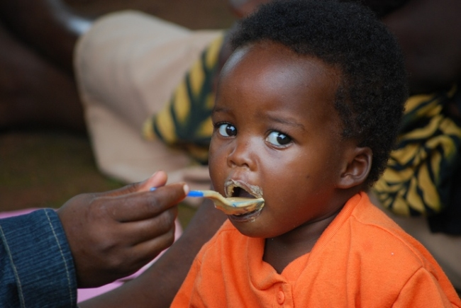 GMO Food is not the Answer for Hunger and Malnutrition