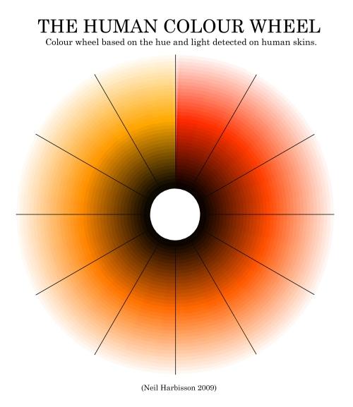 Best Foundation Makeup Human Skin Colour Wheel