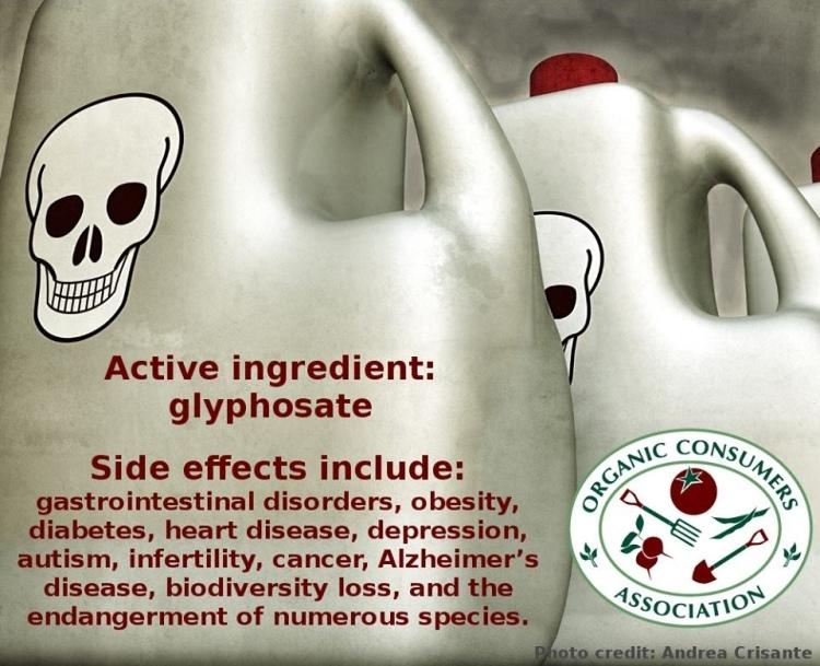 Herbicide GMO Types