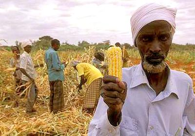 Poor Farmers are Some of the Victims of GMO and Global Food Monopolies