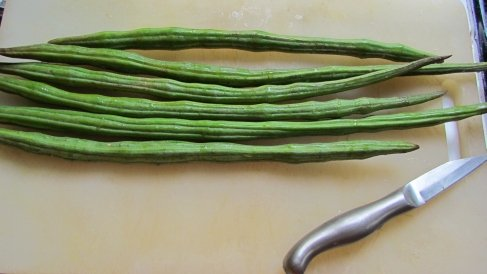 Fresh Moringa Pods