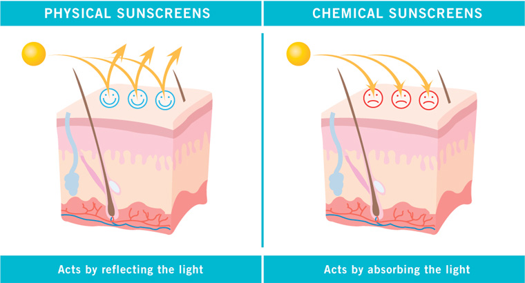Physical and Chemical Sunscreens