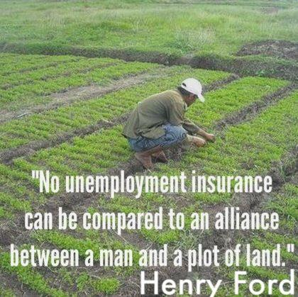 With a Plot of Land, One Can never be Unemployed