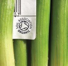Soil Association Organic Logo